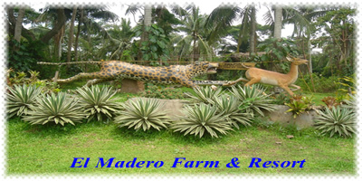 el madero farm and resort batangas
